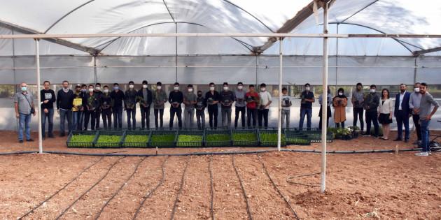 Tarsuslu Öğretmen Görev Yaptığı Okul İçin Fide Talep Etti, Tarsus Belediyesi 20 Bin Fide Gönderdi
