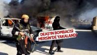 DEAŞ'ın Bombacısı Mersin'de Operasyonla Yakalandı