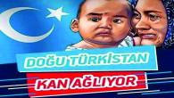 Uygur Türk'lerine Çin İşgencesi