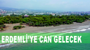 Deniz Sahil Kum Ve Yeşil Erdemli