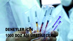 Yerli aşıda insan deneyleri için önümüzdeki hafta bin doz üretim yapılacak
