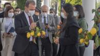 Başkan Seçer den Mezitli Küçük Sanayi Sitesi Açıklaması: Halka Rağmen Bir Şey Yapamazsınız