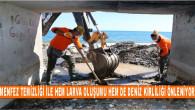 Kent Genelindeki 862Menfez Düzenli Olarak Temizleniyor Ve İlaçlanıyor