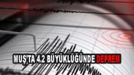 Muş'ta 4.2 büyüklüğünde deprem