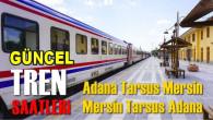 Son kısıtlamaların ardından Adana-Tarsus-Mersin tren seferlerine yeni düzenleme
