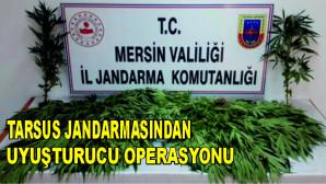 Tarsus Jandarmasından Uyuşturucu Operasyonu