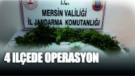 Jandarmadan Mersin Gülnar, Anamur ve Tarsus'ta Yasa Dışı Hint Keneviri Operasyonu