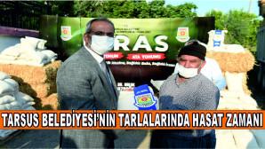 TARSUS BELEDİYESİ'NİN TARLALARINDA HASAT ZAMANI