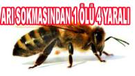 Tekirdağ'da çiftlik çalışanı aile, arıların saldırısına uğradı: 1 ölü, 4 yaralı