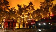 Bakan Pakdemirli'den Mersin'deki yangınla ilgili iç rahatlatan sözler: Biraz daha kolayladık