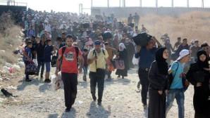 """Mülteciler birlik oldu! Sosyal medyada """"Gitmiyoruz"""" etiketiyle kampanya başlattı"""