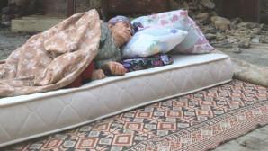 Yangının küle çevirdiği Manavgat'ta çekilen fotoğraf milyonların yüreğini dağladı