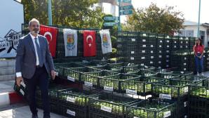 Tarsus Belediyesi Çiftçilere, 500 Bin Adet Karnabahar, Brokoli Ve Marul Fidesi Dağıttı